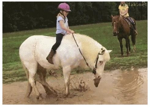 La infanta Elena se cayó de un caballo