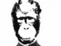 La viñeta de El Último Mono – 18 de enero