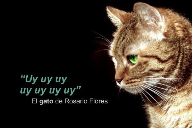 Citas Célebres – El gato de Rosario Flores