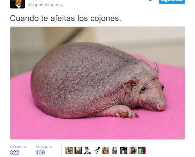 Cuando te afeitas los cojones by @lapuntitanamas