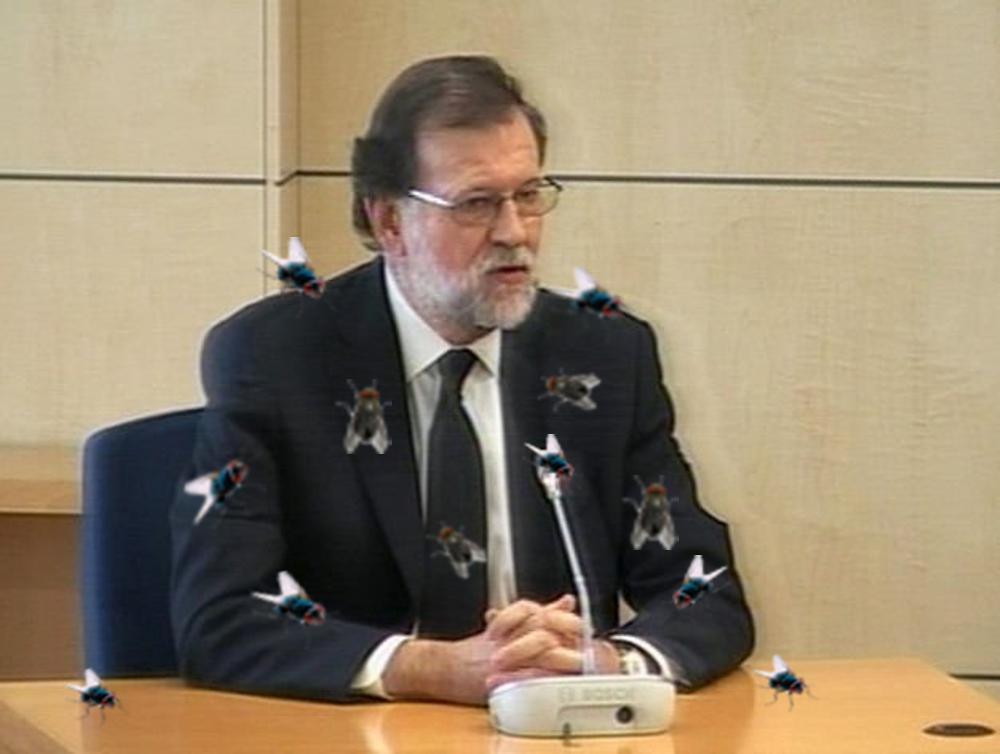 Rajoy lleno de moscas y de mierda