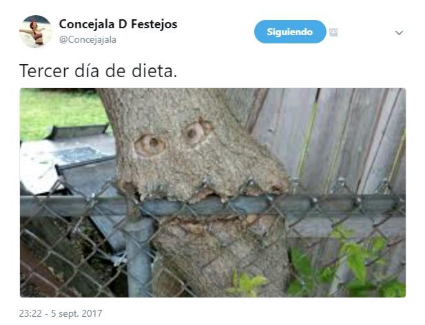 Tercer día de dieta por @Concejajala